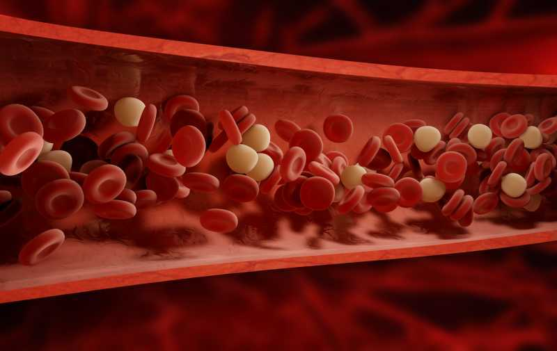 blood dna vein causes